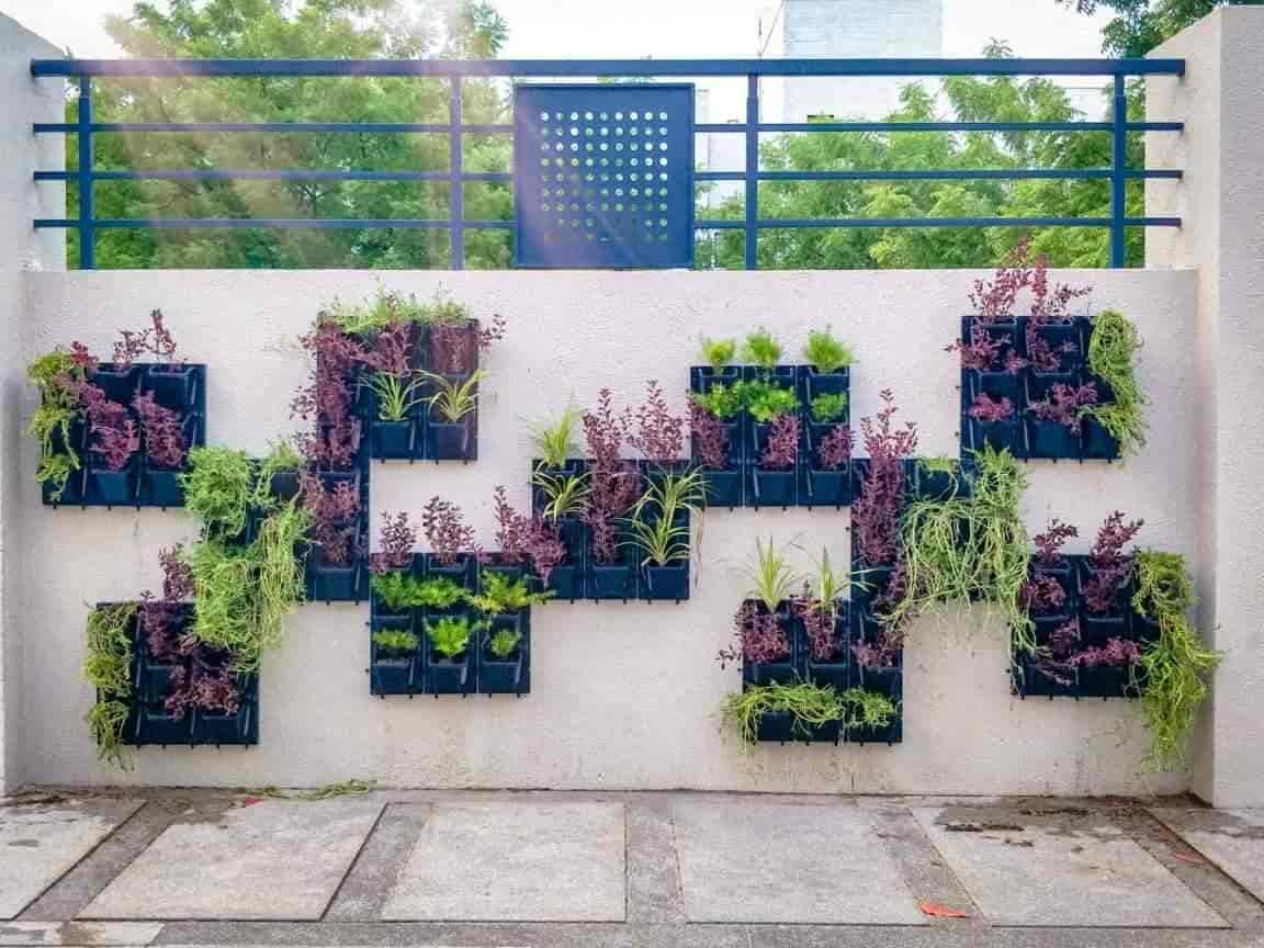 Top 100 Plant Nurseries In Ahmedabad Best Nursery Plant Suppliers Justdial