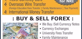 Top 100 Foreign Exchange Dealers in Ahmedabad - Best