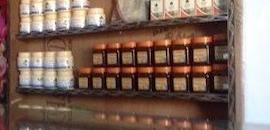Top 10 Himalaya Ayurvedic Medicine Retailers in Ranjit