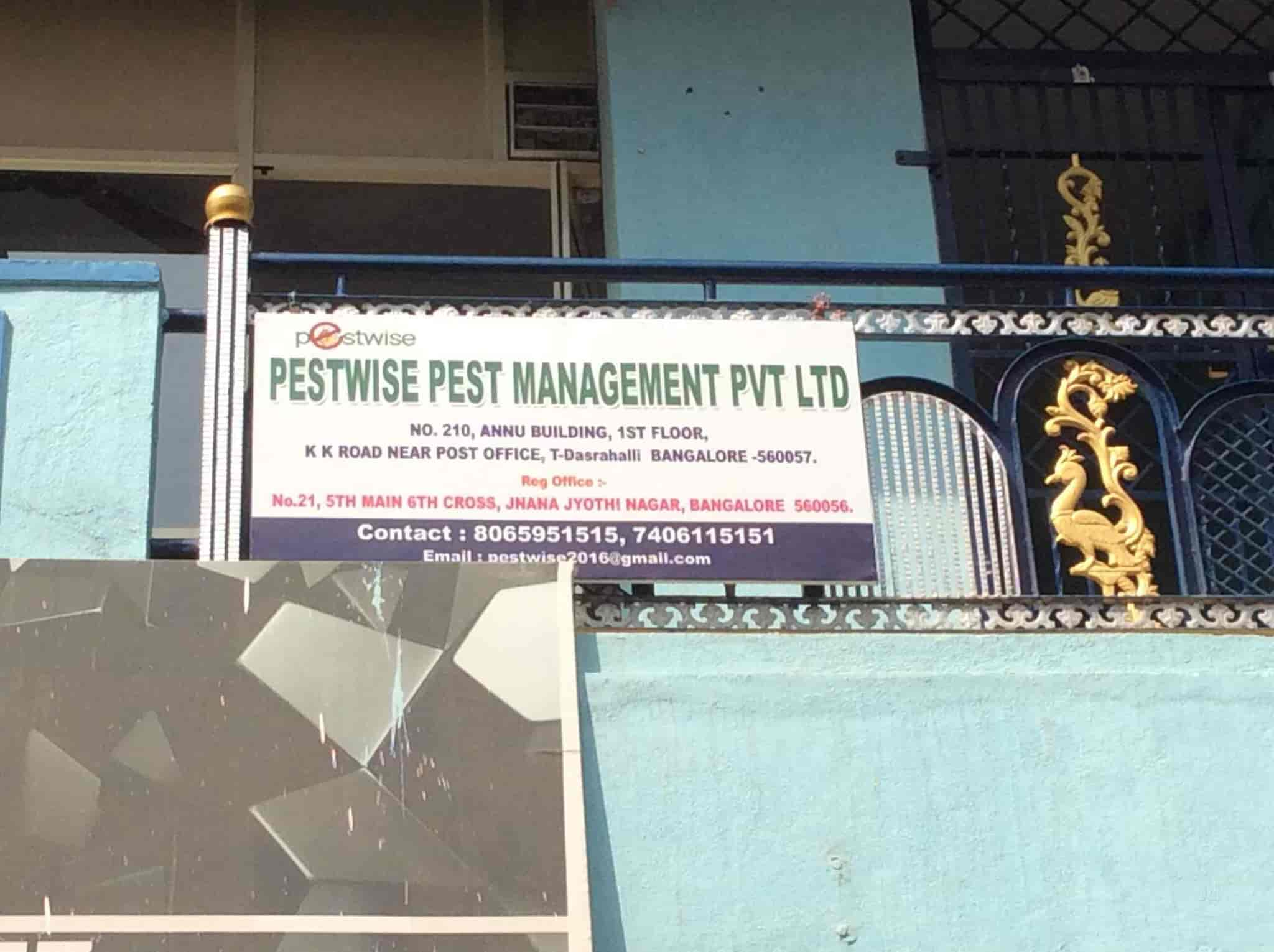 Pestwise Pest Management Pvt Ltd, T Dasarahalli   Residential Pest Control  Services In Bangalore   Justdial