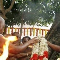 Tamilnadu Brahmin Association