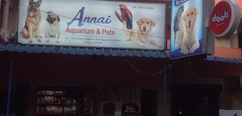 Top 100 Pet Shops in Chennai - Best Pet Store & Suppliers