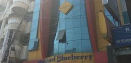 Blueberry Hotel