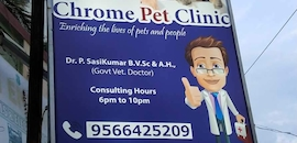 Top 50 Mobile Veterinary Clinics in Chennai - Best Pet