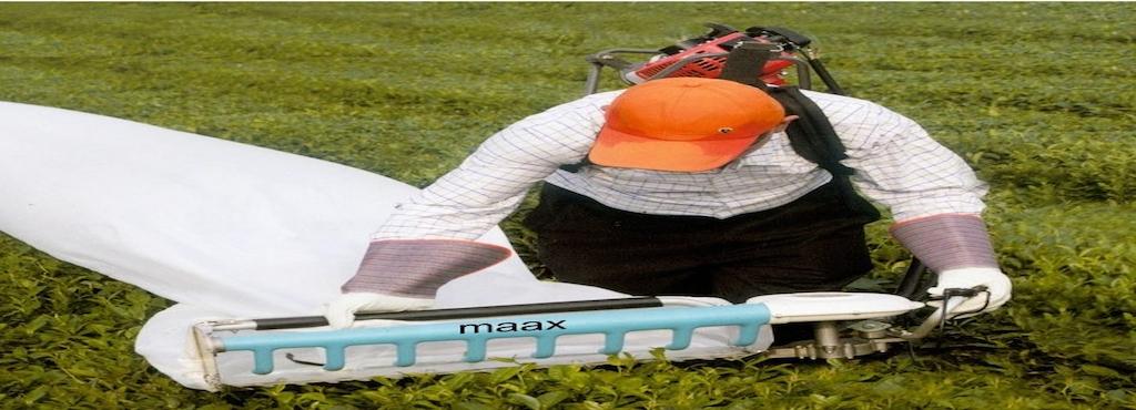 Maax Engineering, Guindy - Garden Equipment Dealers in Chennai ...