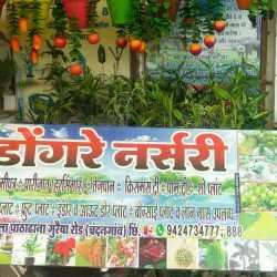 Dongre Nursery Chandangaon Plant Nurseries In Chhindwara