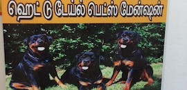 Top Dog Breeding Services in Coimbatore - Best Dog Mating