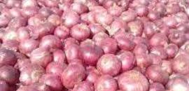 Top 100 Fruit Wholesalers in Coimbatore - Best Fruit