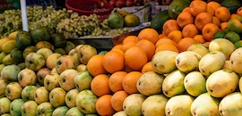 Top 20 Fruit Wholesalers in Guwahati - Best Fruit Suppliers