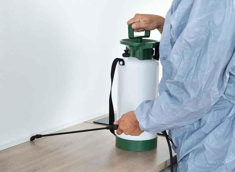 Choosing a Pest Control Provider