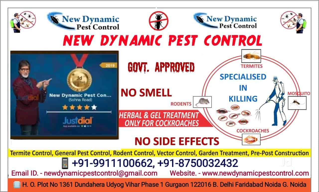 New Dynamic Pest Control, Sohna Road - Residential Pest