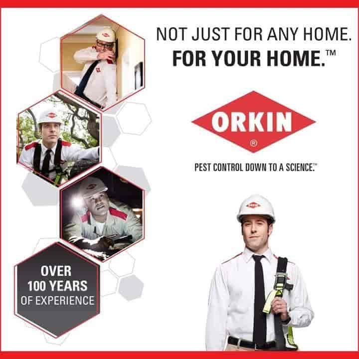 Orkin INDIA Pest Control Services, Okhla Industrial Area