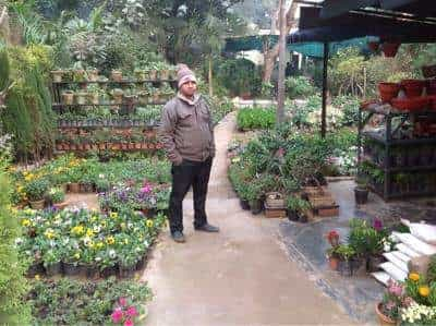 D S Kataria Nursery Photos Nizamuddin