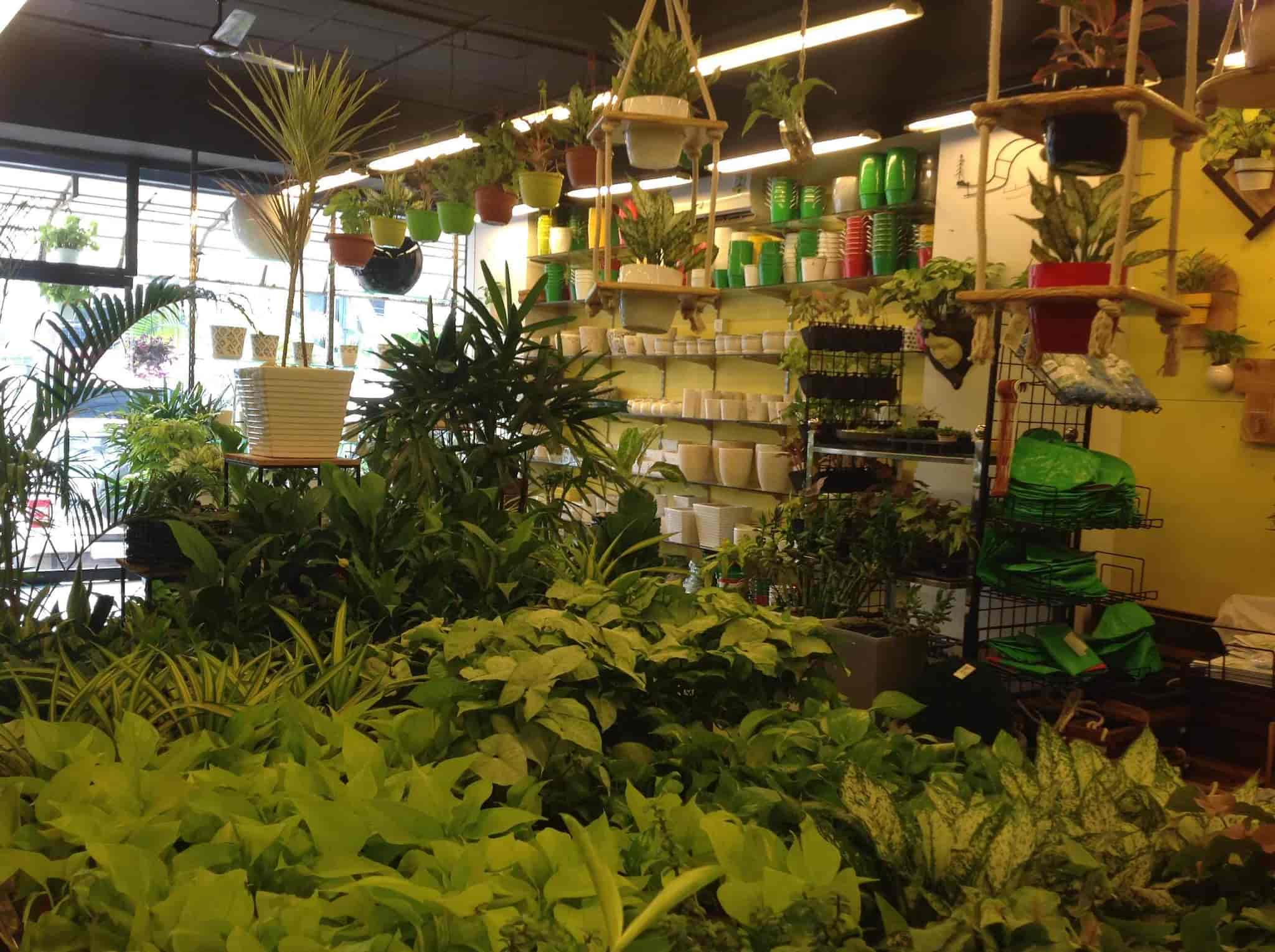 Awesome Farm And Garden Stores #16 - Agricom Farm And Garden Shop ...