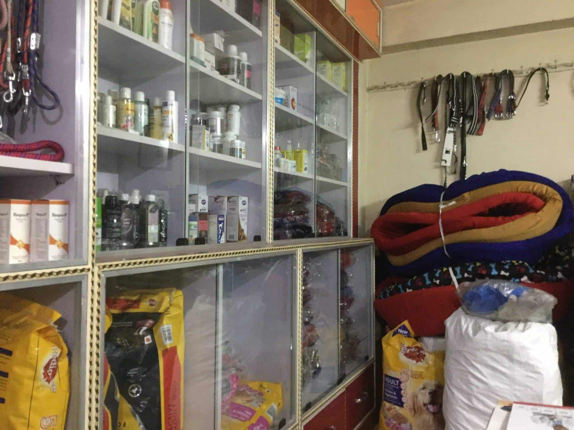 Care U0026 Cure Dog Clinic, Rajendra Nagar Sector 2   Doctor B P Singh   Pet  Shops In Delhi   Justdial