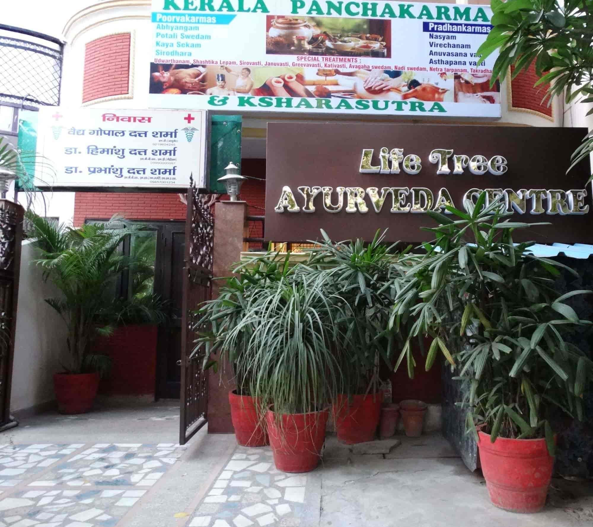 Life Tree Ayurveda Centre Niti Khand 3 Indirapuram Ayurvedic