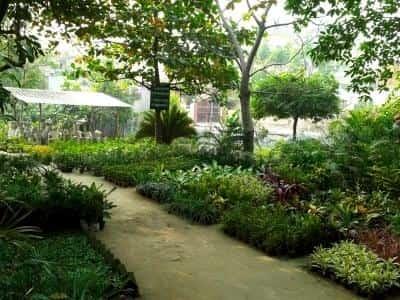 Green Garden Nursery