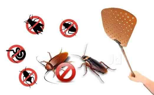 Powerful Methods for Pest Control