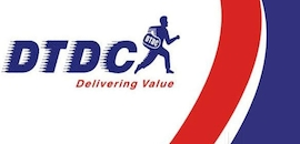 Preferred Courier Services in Goa - Top Express Delivery