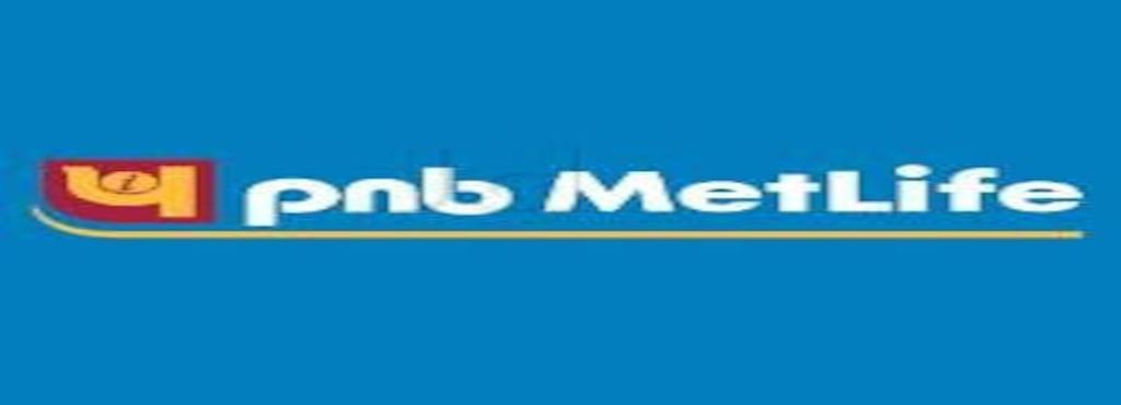 PNB Metlife India Insurance Company Ltd, Guntur Bazar - Insurance ...