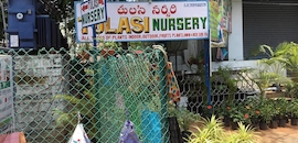 Tulasi Nursery
