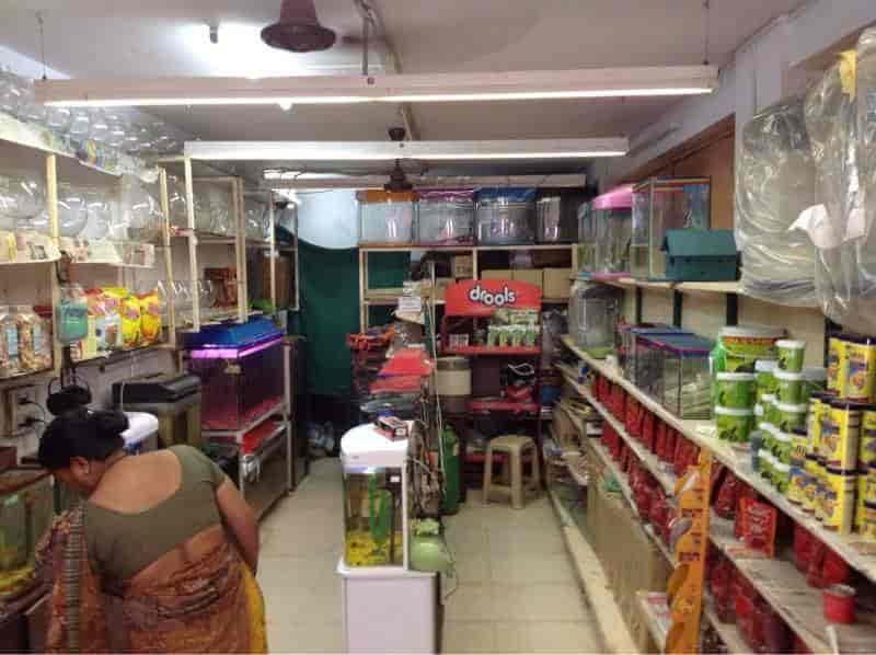 Top 50 Fish Aquarium Dealers In Indore Best Fish Aquarium Shops Justdial