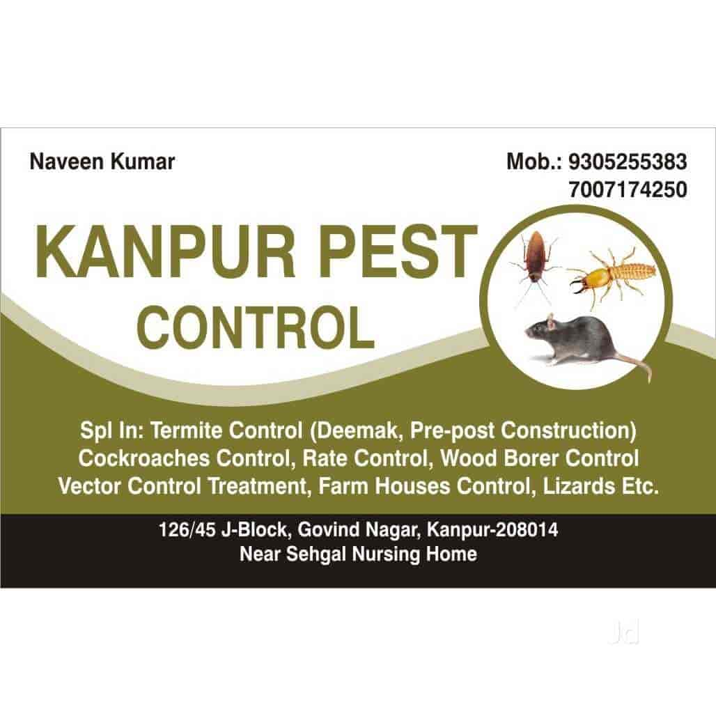 Top 50 Residential Pest Control Services in Kanpur - Best Pest Control  Services - Justdial