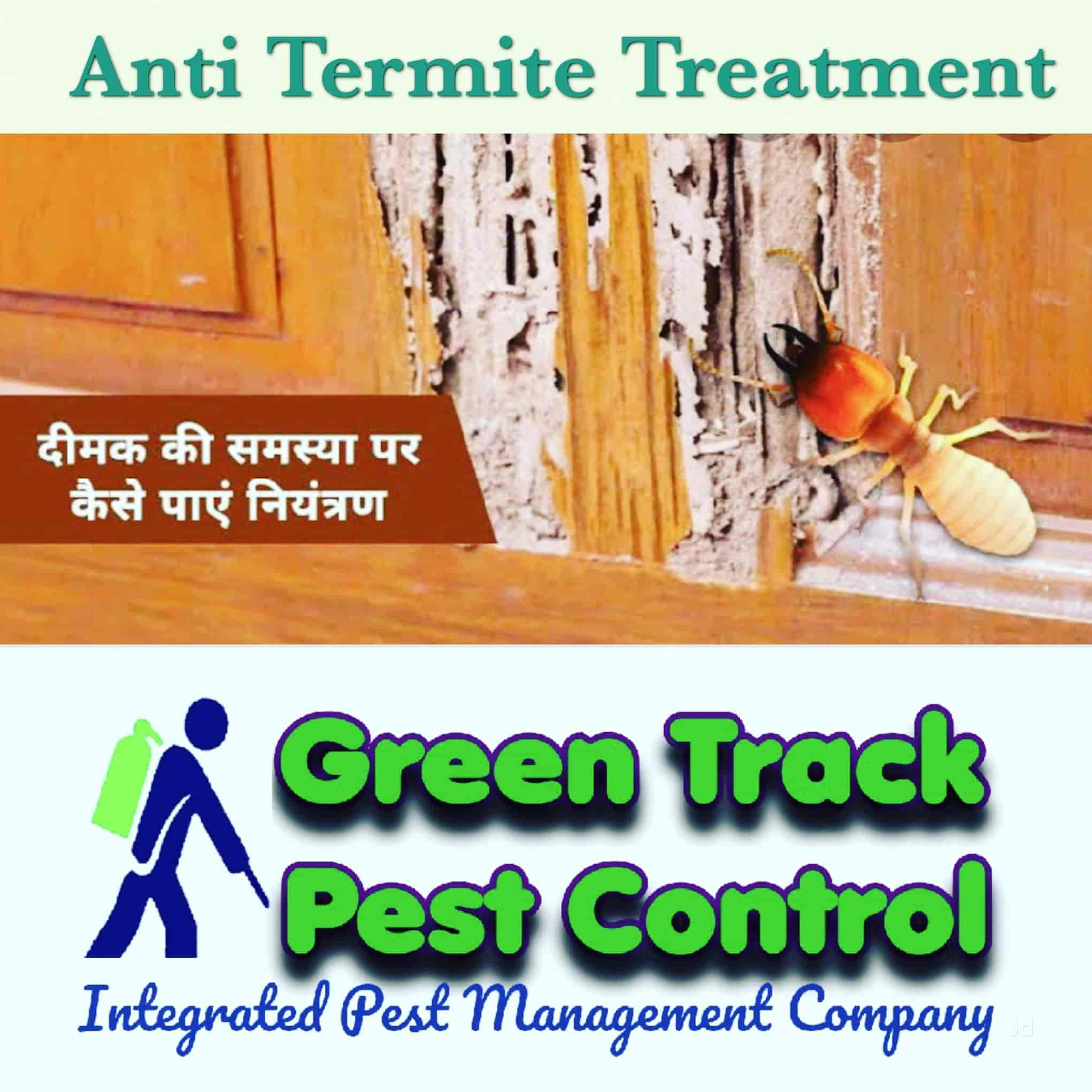 Top 50 Termite Control Services In Kanpur Best Termite Treatment Services Justdial