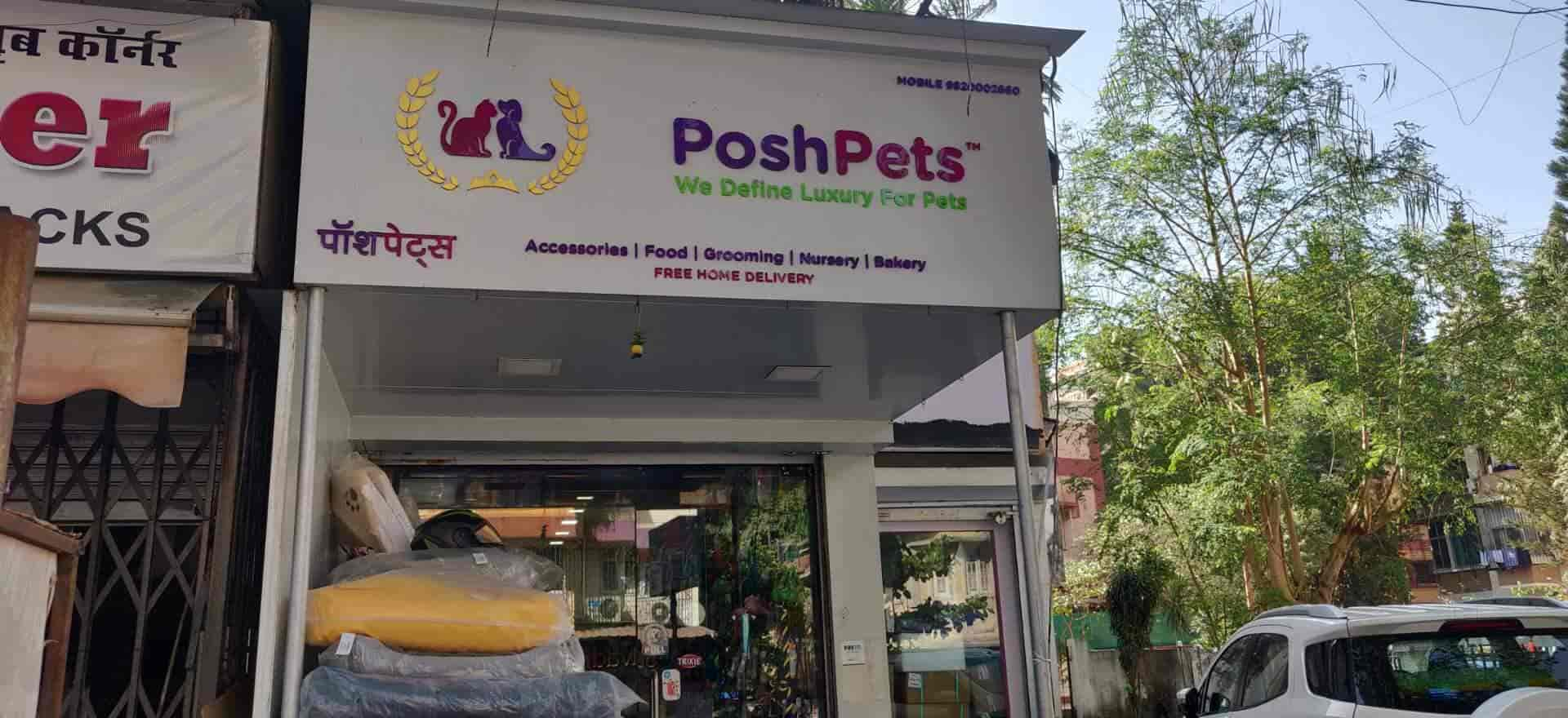 Outstanding Posh Pets Bandra West Pet Shops In Mumbai Justdial Home Interior And Landscaping Analalmasignezvosmurscom