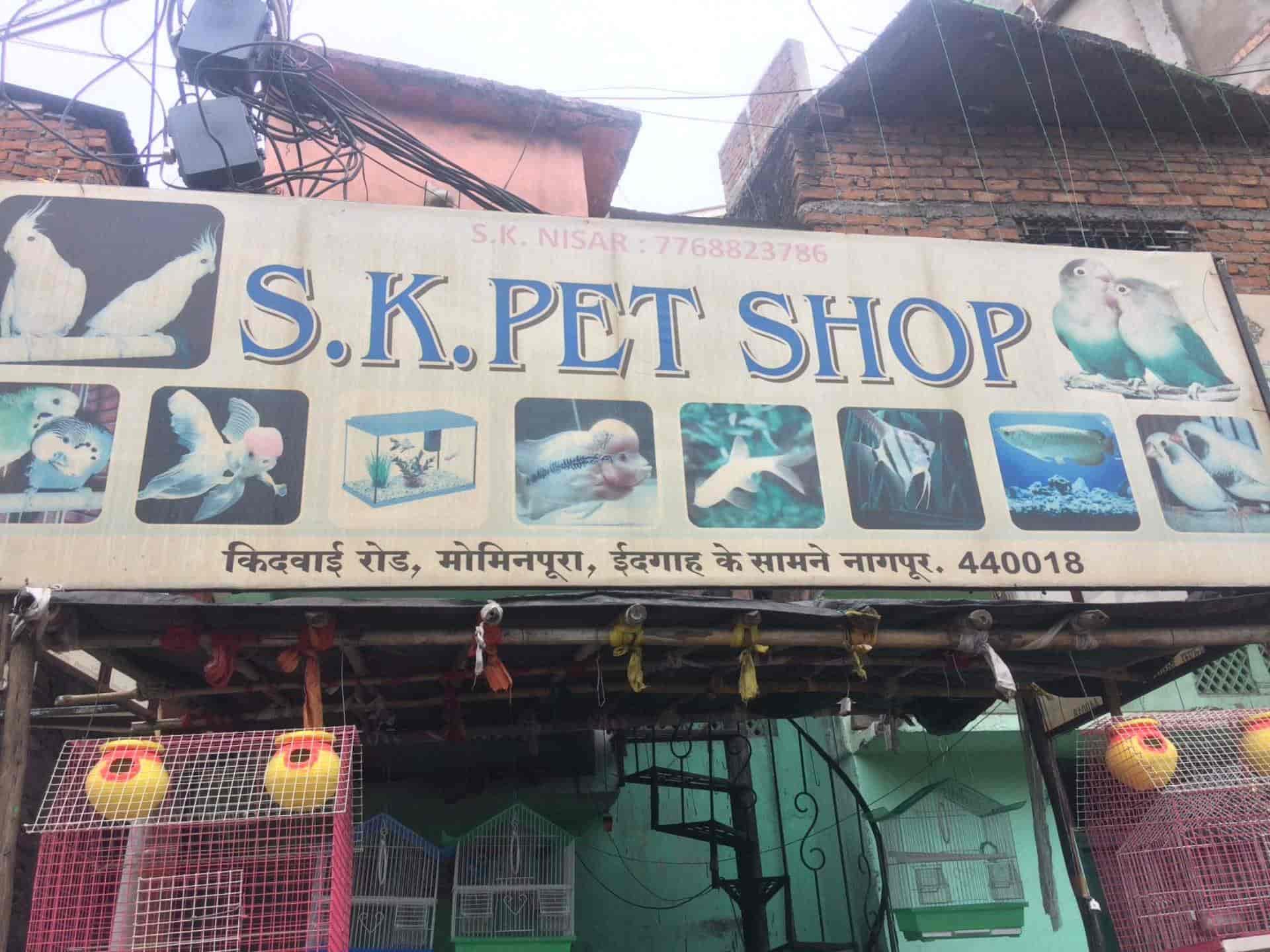 S K Pet & Fish Food Supplier, Mominpura - Pet Shops in