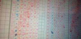 Top Online Lottery Agencies-Rajshree in Zingabai Takali