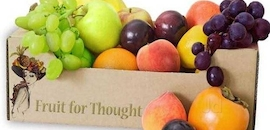 Top 50 Mango Distributors in Mumbai - Justdial