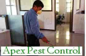 Top 10 Herbal Pest Control Services In Pimpri Chinchwad New Town