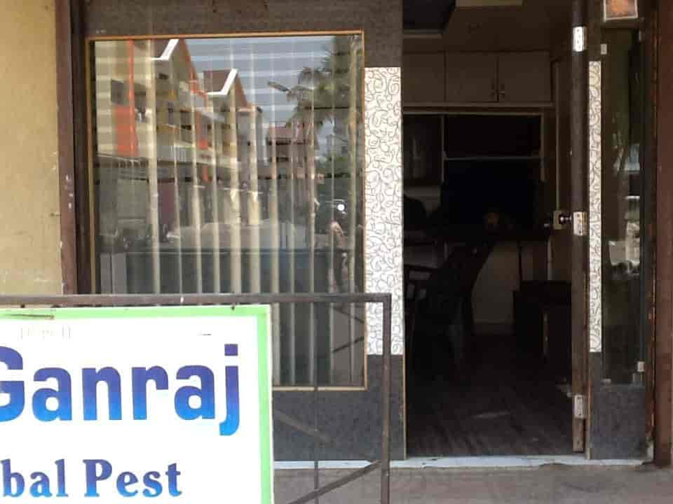 Top 3 Bed Bugs Treatment In Pimpri Best Bed Bug Control Service