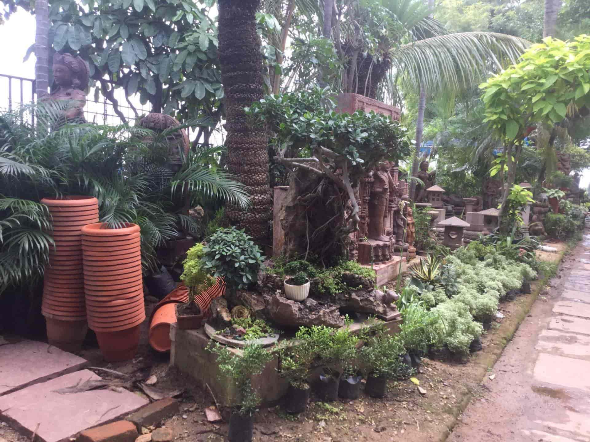 Top 10 Plant Nurseries In Raipur Chhattisgarh Best Nursery Plant