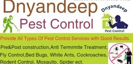 Top 24 Hours Pest Control Services in Solapur - Justdial
