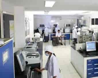 msn office. msn laboratories pvt ltd corporate office msn s