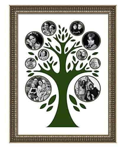 Buy Elegant Arts Frames Family Tree P 353 B Collage Photo Frame 24