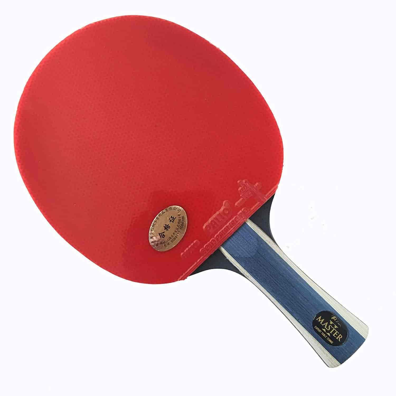 Fantastic Palio Master 2 Table Tennis Racket Amp Case Download Free Architecture Designs Barepgrimeyleaguecom