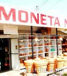 Moneta Nursery