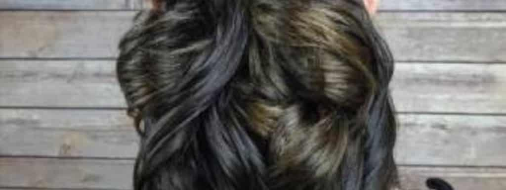 Salon Blissful And Royal Poochie Near N Power Rde University Dr