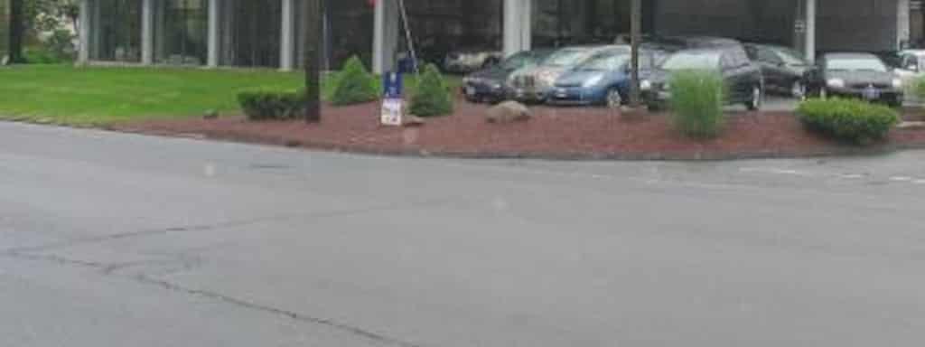 J And M Auto >> J M Automotive Sales Service Llc Near New Haven Rd