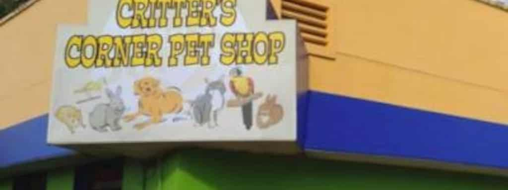 Critter S Corner Pet 1958 State Road 44 New Smyrna Beach