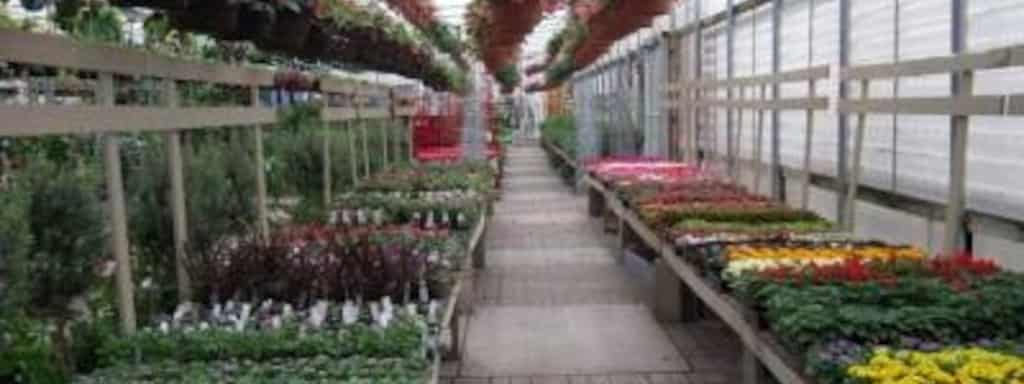 Village Green Nursery